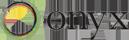 ONYX b2b tech SEO agency