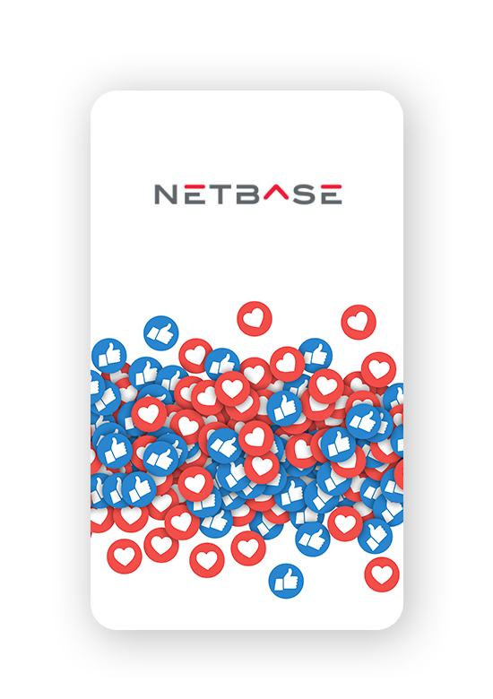 IG-Client-Story-NetBase-1